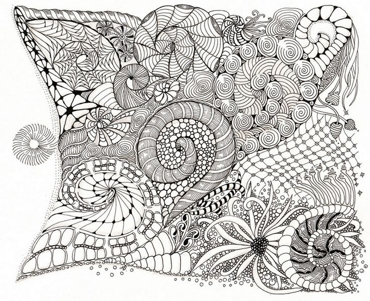 shells adult colouring in printables pinterest