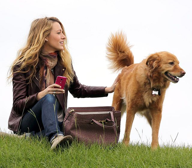 Blake Lively She may be smitten with hubby Ryan Reynolds, but the former Gossip Girl star loves his dog Baxter just as much.