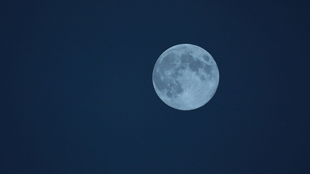 Blue Moon: Daily Photographers