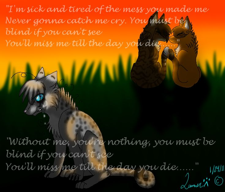 29 Best For Jayfeather, Warrior Cats Images On Pinterest
