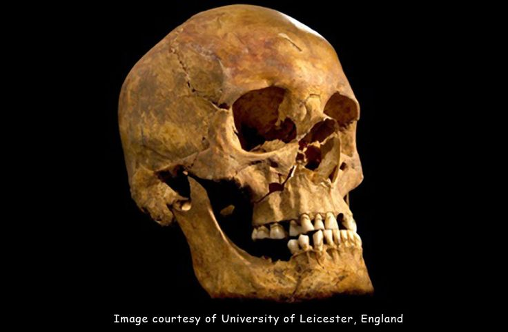 "DNA proves ""beyond a reasonable doubt"" that the bones found under the parking lot  in Leicester last summer are indeed those of Richard III, the last Plantagenet king of England. #genealogy #DNA #AncestryDNA"