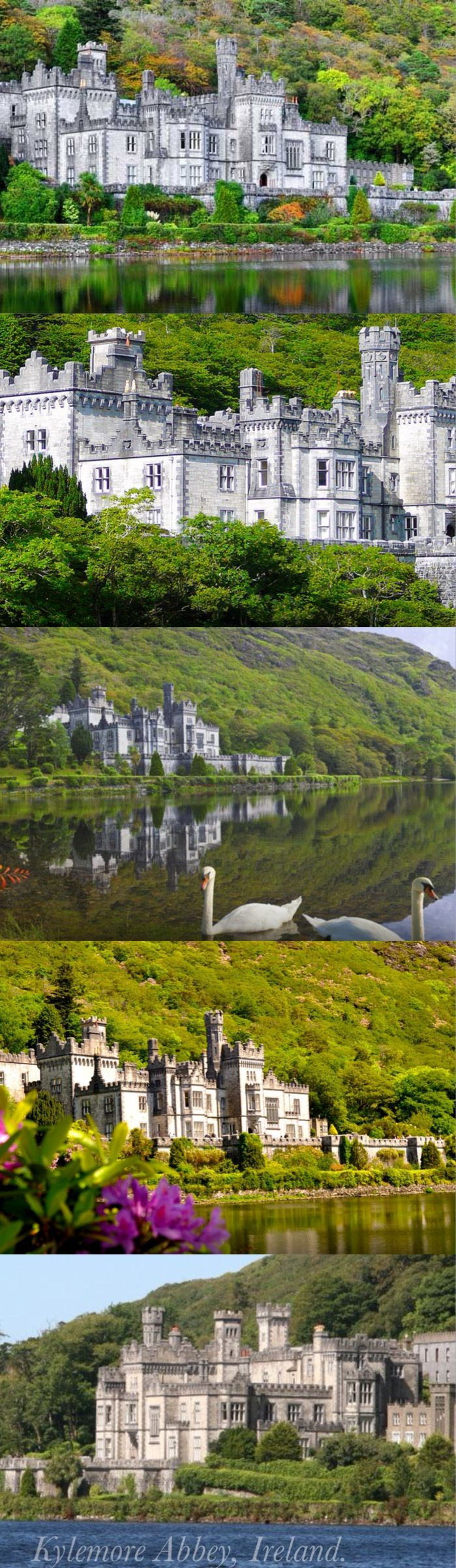 Kylemore Abbey is a Benedictine monastery founded in 1920 on the grounds of Kylemore Castle, in Connemara, County Galway, Ireland. The abbey was founded for Benedictine Nuns who fled Belgium in World War I. The current Mother Abbess of the Benedictine Community is Mary Margaret Funk.Kylemore Castle was built as a private home for the family of Mitchell Henry, a wealthy doctor from London, whose family was in textile manufacturing from Manchester, England.