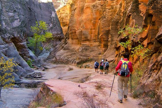 Southwestern Utah is home to some of the most stunning landscapes in all of North America. Join #REIadventures on the perfect hiking and camping adventure through this treasure trove of sights.