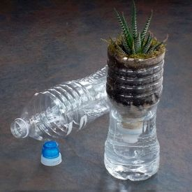 Give new life to an empty, plastic water bottle. It's easy to make an earth friendly, self-watering vase for your home or office.