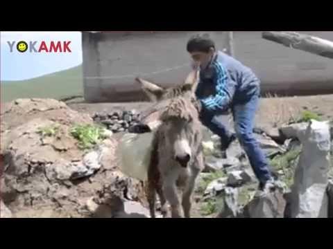 Kıraç'ın Eşeği Saldım Çayıra Şarkısına muhteşem klip çeken çocuklar
