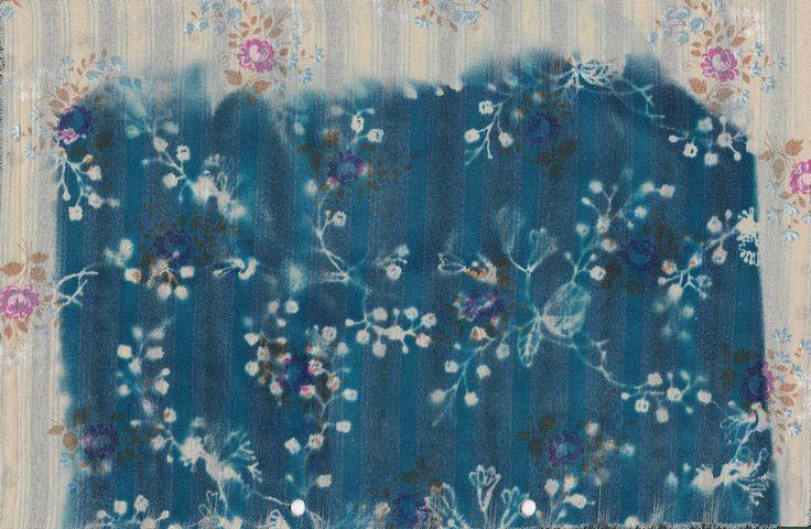 http://elinalaitinen.fi/ cyanotype sketch by Elina Laitinen