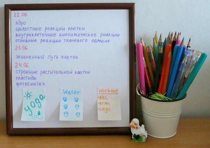 ap biology water essay
