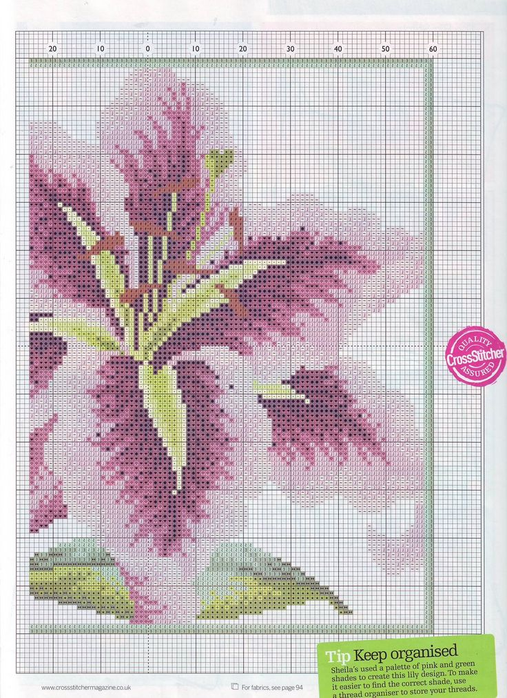 Show Stopper From Cross Stitcher N°189 March 2007 4 of 4