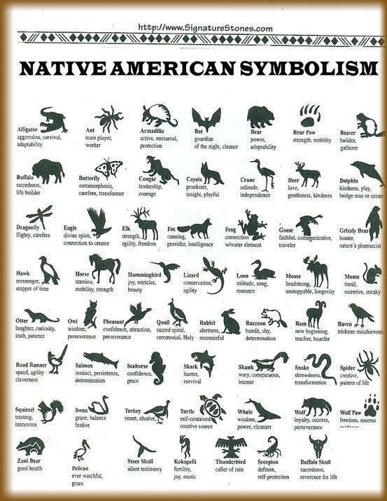 Native American Animals And Meanings Native american animal symbols