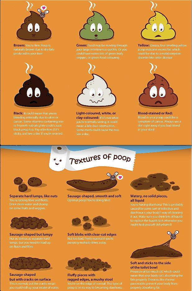 187 Best Poop Images On Pinterest | Health Tips, For Your Health