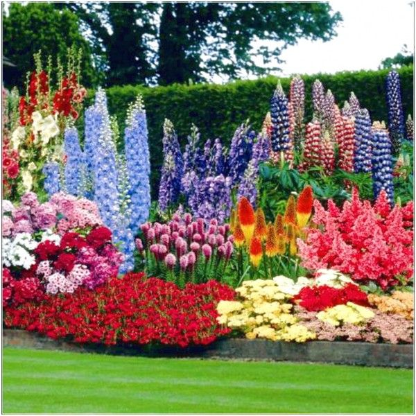 Beautiful perennial plants picture Arranging Flowers from the Garden with Perennials Flower Bed