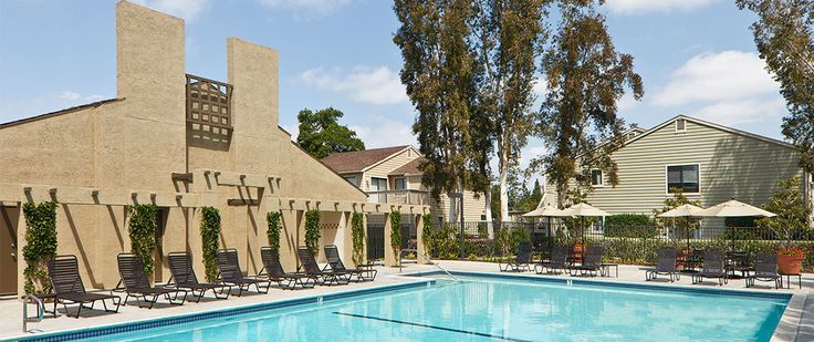 Windwood Knoll Apartments in Irvine - Irvine Company Apartments