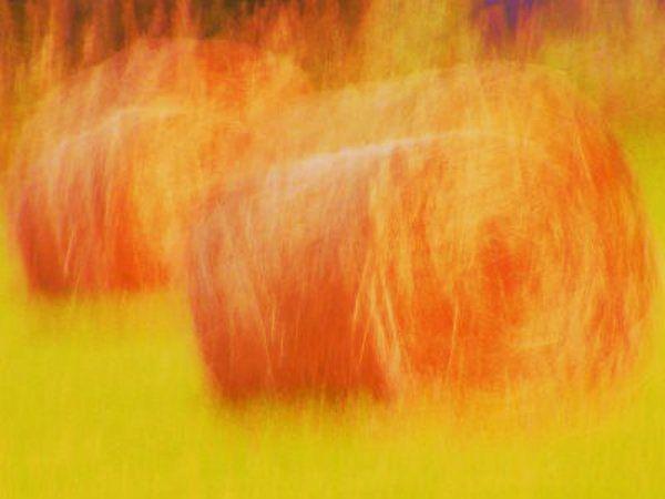 Un flash storm che si abbatte improvvisamente suNuoro, con temporali e fulmini che hanno interessato in particolare la zona diVillanov   http://tuttacronaca.wordpress.com/2013/08/27/flash-storm-a-nuoro-fulmine-colpisce-le-balle-di-fieno-e-genera-incendio/