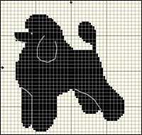 Pudel (svart; dvärg-)
