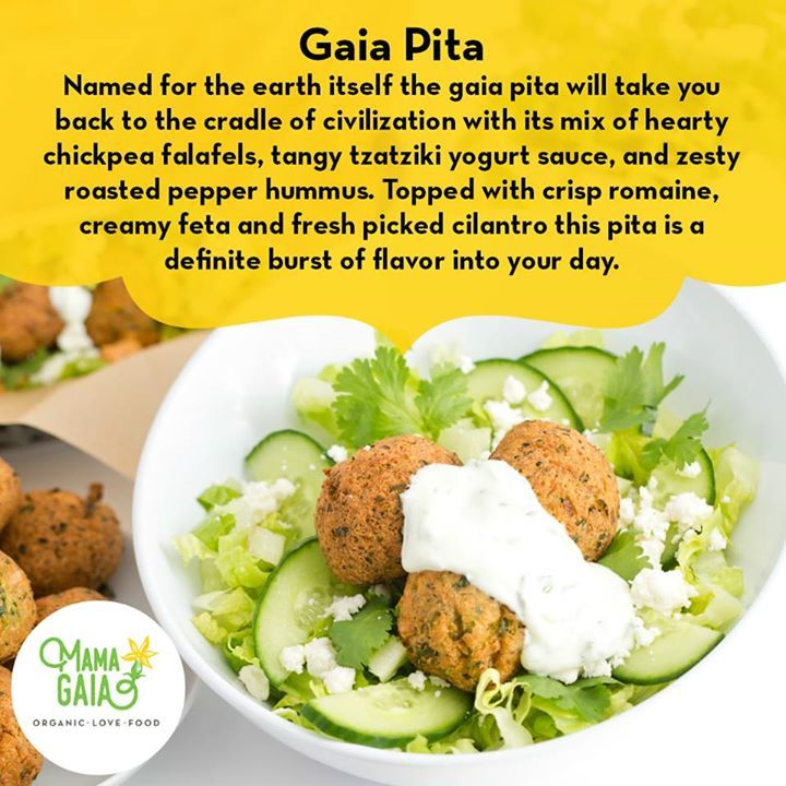 Gaia Pita Named for the earth itself the gaia pita will take you back to the cradle of civilization with its mix of hearty chickpea falafels tangy tzatziki yogurt sauce and zesty roasted pepper hummus.   mamagaia.net #Memphis #Healthy #Organic