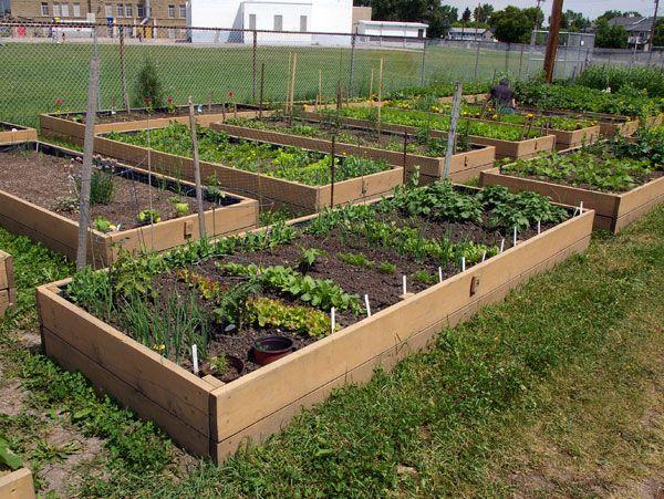 Garden Plot Idea 2 Gardening Inspirations Pinterest