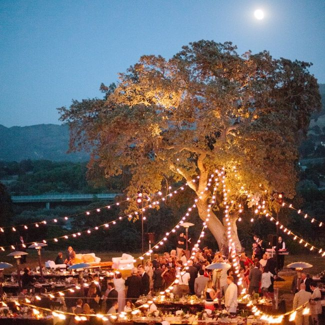 "Friend of a friend's wedding. ""As the night wore on, globe lights strung from an oak tree cast a warm glow on the reception."""