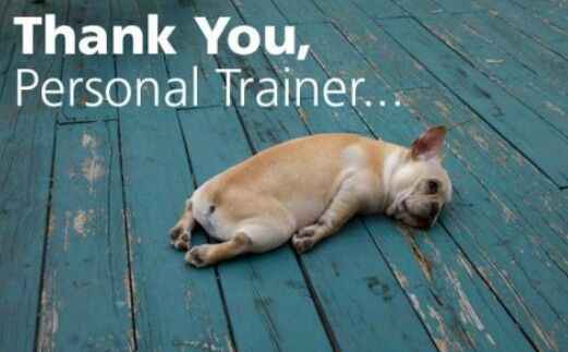 Thank you, personal trainer. #funny #quote