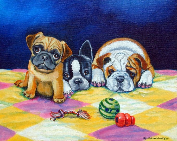 Pug Pictures And Prints | Pug Boston Terrier Bulldog Puppy Giclee Fine Art Print Dog Art by Lyn ...