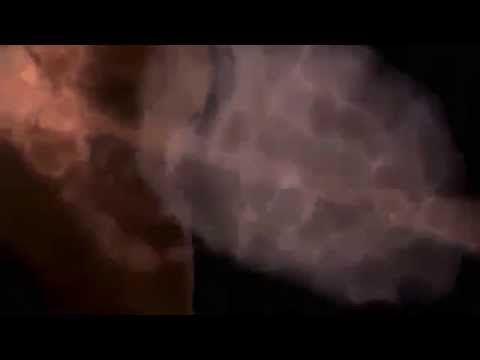 ЭТО ДОЛЖНА ЗНАТЬ КАЖДАЯ ДЕВУШКА ! #ЭТО #ДОЛЖНА #ЗНАТЬ #КАЖДАЯ #ДЕВУШКА #Алкоголь #убивает #невозможность #репродуктивной #функции   #Жданов #Владимир #Георгиевич #российский #общественный #деятель #председатель #Союза #борьбы #за #народную #трезвость #Официальный #сайт #Николай #Левашов #levashov #движения #Возрождение  #Золотой #Век #rodvzv.ru #Вся #правда #ГМО #gmo-net #реступным #реформам #образования #rusobraz #Вся #правда #прививка #privivke