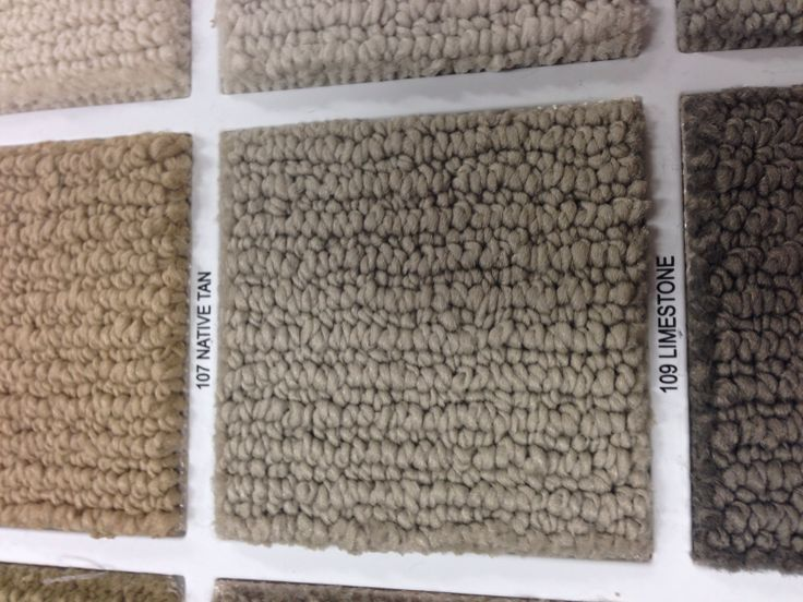 Shaw Carpet Color New House Home Decor Carpet
