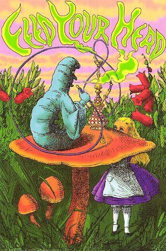 Alice in Wonderland Caterpillar Feed Your Head Art Poster Print null http://www.amazon.com/dp/B007WTLO2A/ref=cm_sw_r_pi_dp_a8ATtb07KR494EEP