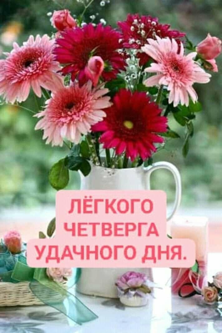 цветка фотография картинки прекрасного четверга самодельная шляпа