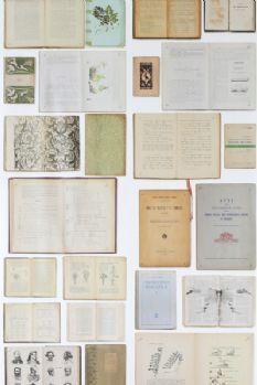 Biblioteca Wallpaper by Ekaterina Panikanova NLXL - EKA07