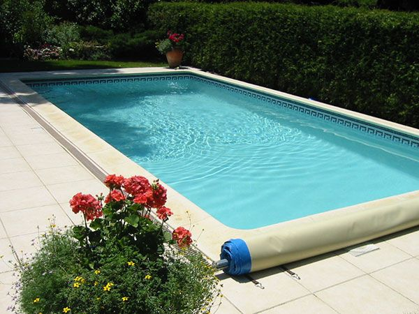 24 best Haie pour cacher mur images on Pinterest Decks - l eau de ma piscine est verte et trouble