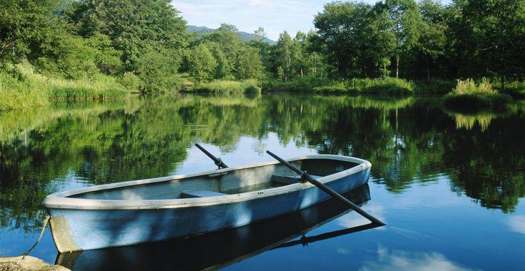 Info courriel n°7 Balade à pieds nus à la vallée mabile - Lac de Savenay et sentier du marais Fresnier (44) Le dimanche18 mars 2018 de14h à 16h