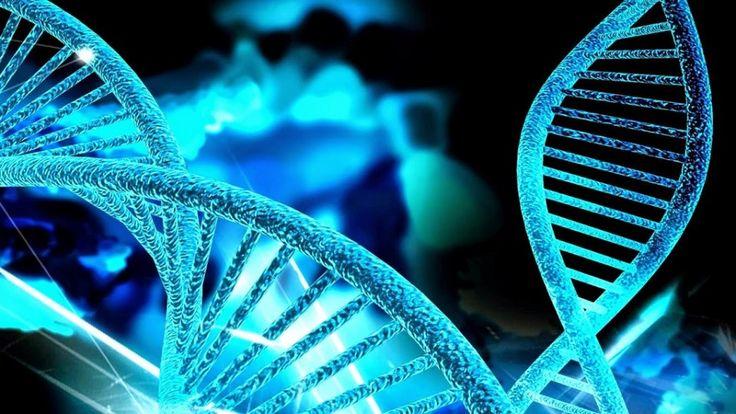 genetica - Buscar con Google