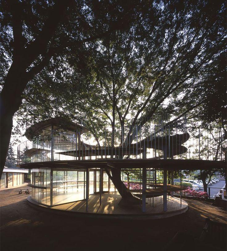 kindergarten-around-tree-zelkova-fuji-tezuka-architects-34