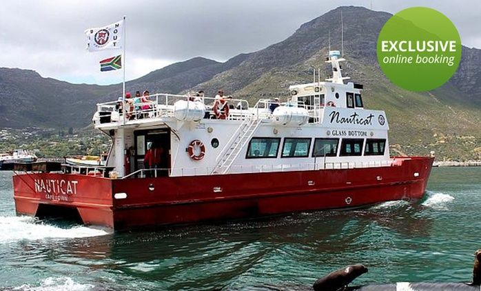 Seal Island Trip on a Glass-Bottom Boat in Hout Bay