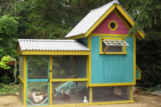 Cute chicken coop plans - photo#33