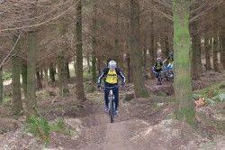Hopton Woods - home of mountain biking in Shropshire