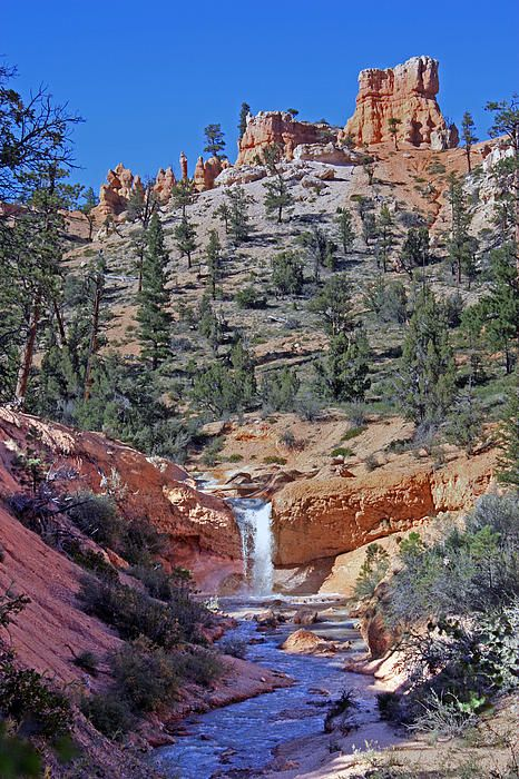 Mossy Cave Waterfall a short hike in Bryce Canyon National Park, trailhead located along Scenic Byway 12.