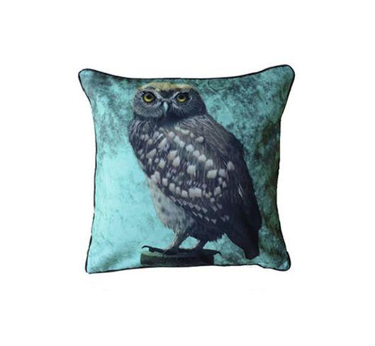 Myrte sisustustyyny, Little owl in caledon