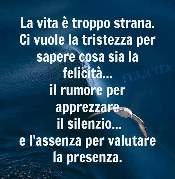 Vita / La vida es demasiado rara. Se desea la tristeza para saber que es la felicidad...el ruido para apreciar el silencio y la ausencia para valorar la presencia.