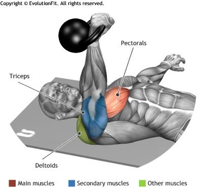 CHEST -  FLOOR PRESS ONE ARM KETTLEBELL                                                                                                                                                                                 Plus