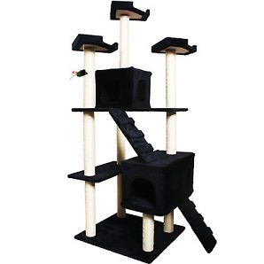 cat perches collection on eBay!