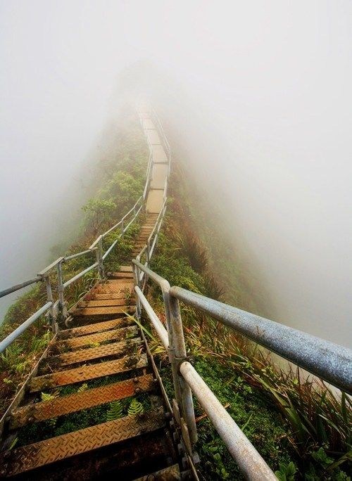 Stairway to Heaven  By: Mathew Cook  ::  (canon 17-40mm f4l usm canon eos 5d)
