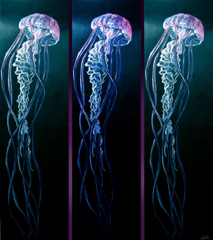 Realistic jellyfish painting the image for Jelly fish painting