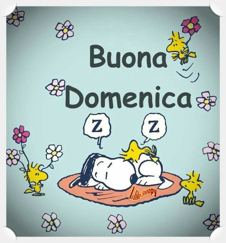 Snoopy buona domenica buongiorno