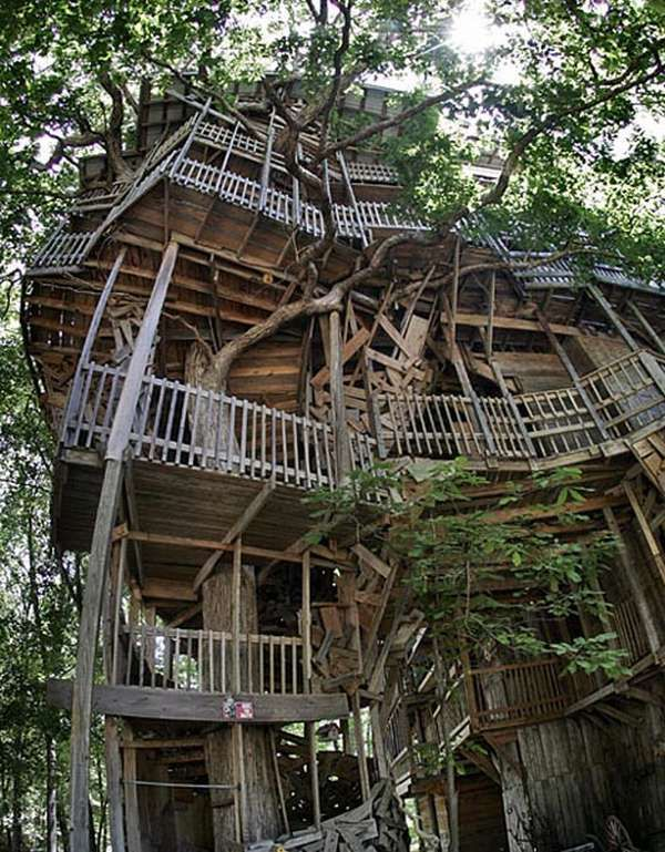 Biggest Treehouse In The World 2014 inside the worlds biggest tree house. youll live like a king in