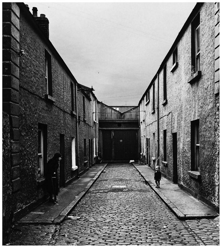 fewthistle: Dublin. 1965. Photographer: Alen MacWeeney
