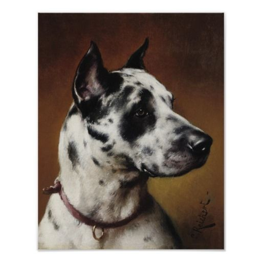 >>>Coupon Code          A Great Dane Poster           A Great Dane Poster lowest price for you. In addition you can compare price with another store and read helpful reviews. BuyDiscount Deals          A Great Dane Poster Online Secure Check out Quick and Easy...Cleck Hot Deals >>> http://www.zazzle.com/a_great_dane_poster-228196382050775724?rf=238627982471231924&zbar=1&tc=terrest