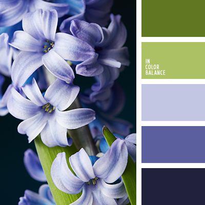 hyacinth hues