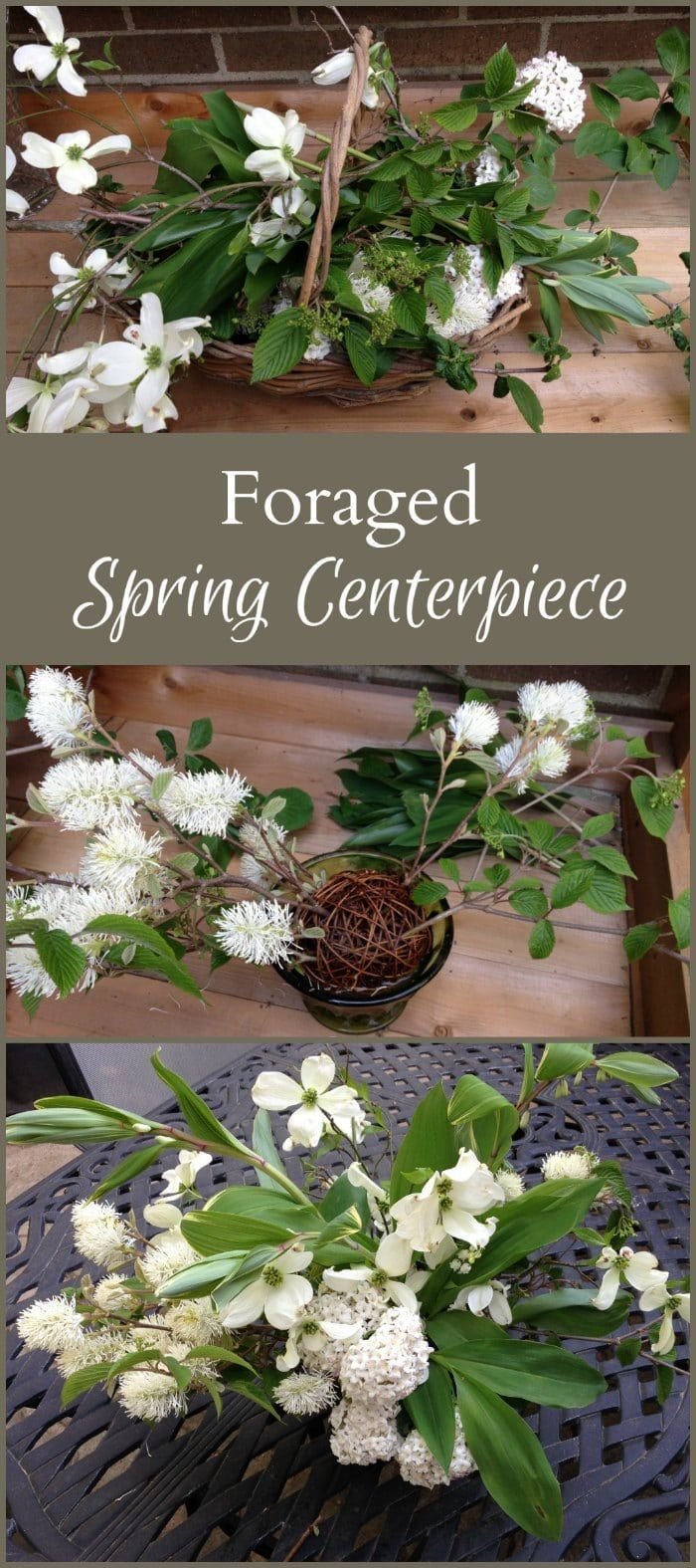 Learn how to make a foraged spring centerpiece from plants blooming around your home. An easy and inexpensive way to bring the beauty of spring indoors. #springflowers #spring #flowers  #dogwood #lilyofthevalley #magnolia #viburnum #flowerarrangement #centerpiece #forage #fothergilla
