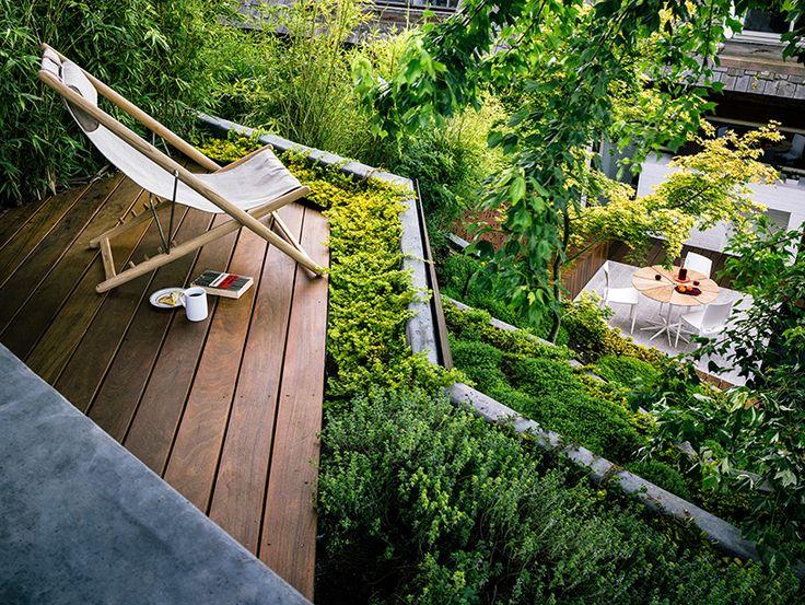jardim vertical lapa: sobre Lapa no Pinterest