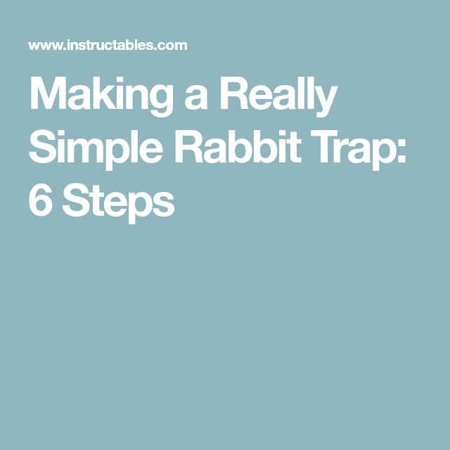 Making a Really Simple Rabbit Trap: 6 Steps